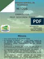 Presentacion de Mitosis-embriologia