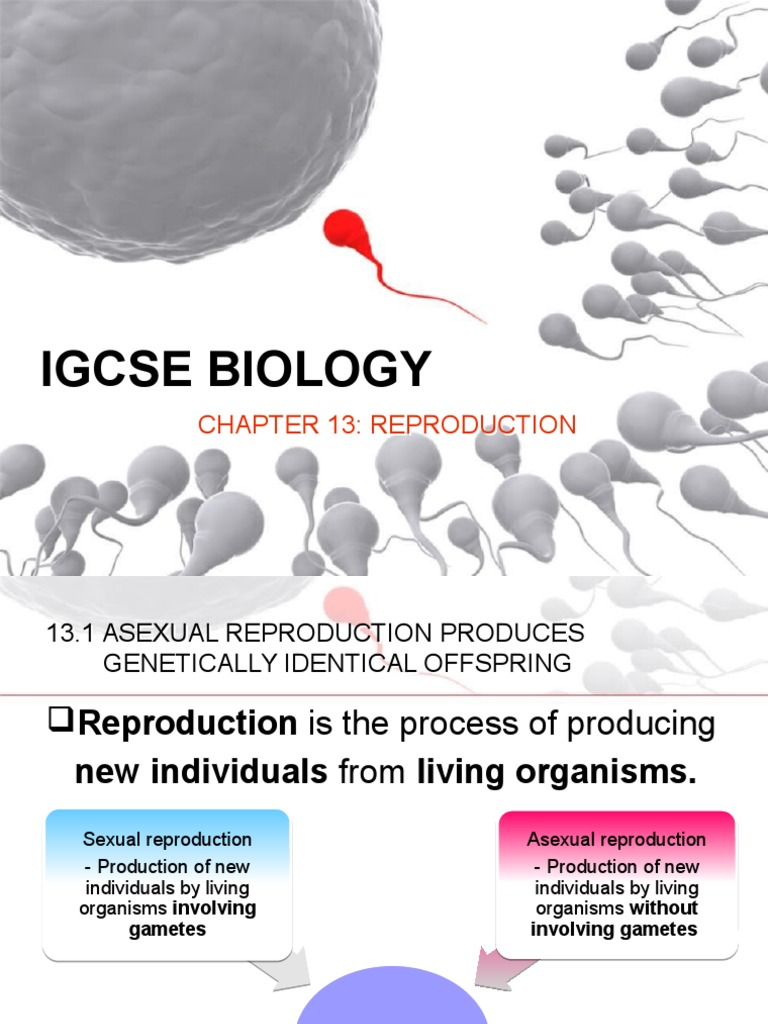 Advantages of asexual reproduction igcse exams
