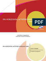 Fp6 horizontal activities involving Smes final summary
