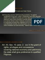 Declaration of Principles (1).ppt