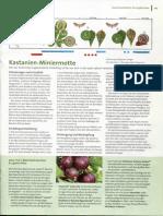 78_Gartenratgeber 9 2012.pdf