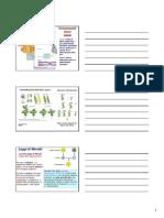 4-Caporossi 14-15 Genetica Generale