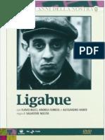 Ligabue (film)