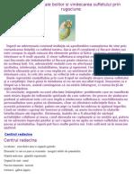 36784521-Cauzele-Subtile-Ale-Bolilor-Si-Vindecarea-Sufletului-Prin-Rugaciune.pdf