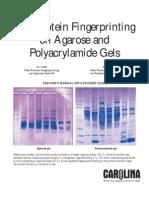 Fish Protein Fingerprinting