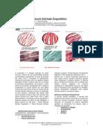 apfisiologiamusculoesqueletica2012