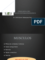 Fisiologia Dental