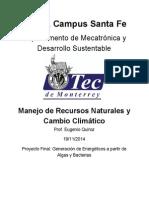 Generación Electrica en México