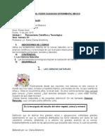 Guia de Cnn Madurez i Nivel Enc. 01 II Semestre 11-07-15