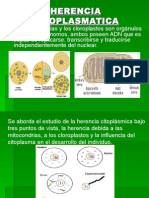HERENCIA CITOPLASMATICA.ppt