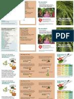 Moringa Brochure 2up a4