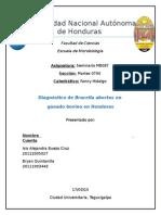 Dx Brucella Abortus Ganad Bovino en Honduras