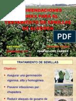 Algodonero - Tratamiento Para Semillas