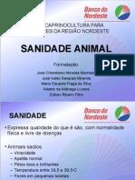 CURSO OVINOCAPRINO - sanidade