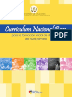 1. CNB_Formacion Docente_.pdf