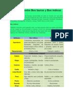 Diferencias entre Bos taurus y Bos indicus.docx