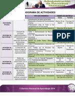 Cronograma de Actividades(1).pdf