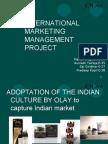 International Marketing Management Project