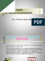 8.La Propiedad
