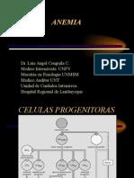 Fisiopatologia - Anemia