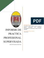 Informe Practica Final