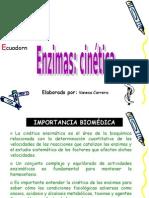 Capitulo 8 Cinetica Enzimatica