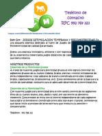 CATu00C1LOGO BABY GYM.pdf