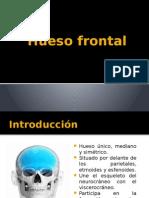 Hueso frontal PII.pptx