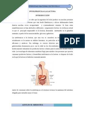 dieta intolerancia lactosa pdf