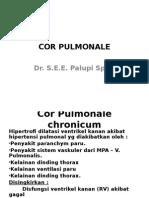 dr.Palupi. Cor Pulmonale