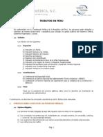 Tributos principales en el Perú