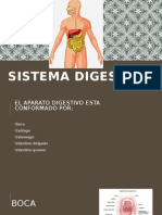 Sistema digestivo. expo.pptx
