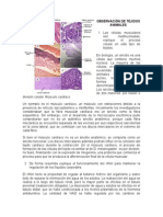 Taller Biologia Fundamental