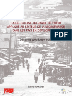 Guide_daudit_externe_du_risque_de_credit_en_microfinance.pdf