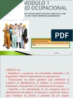 Mod. 1 Presentacion Salud Ocup p