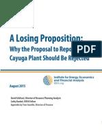 IEEFA Aug 2015 Losing Proposition