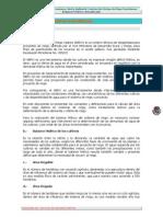 1.-Requerimiento de agua.pdf
