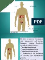Fisiopatologia Renal