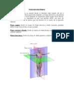 Clase 1 AnatomÃ-A y FisiologÃ-A I.
