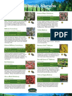 Shrubs Catalog