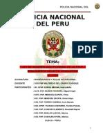Monografia PNP