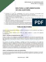 Instrucciones Para La Implementación de una Auditoría