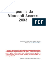 5166_Apostila Completa de Microsoft Access 2003