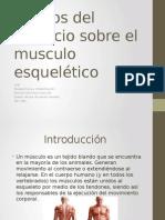 Efectos Del Ejercicio Sobre El Musculo Esquelético