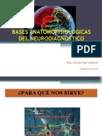 Bases Anatomofisiologicas Del Neurodiagnostico
