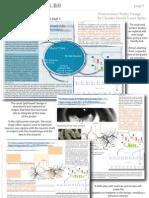 Neuroscience Poster Design 3