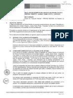 TDR CP Nø 0005-2010 Estud Definitivo