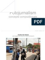 Fotojurnalism_concepte compozitionale