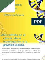 Aplicaciones RNAS