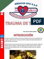 Traumadetoraxpsf 150410142009 Conversion Gate01